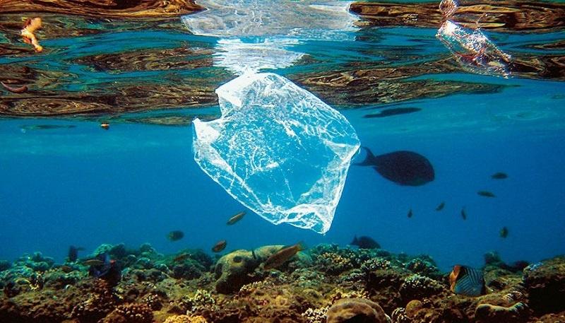 Iles de déchets plastiques : La faute à quoi ou la faute à qui?
